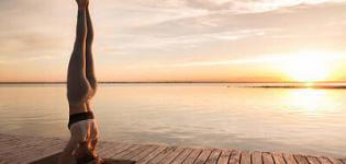 Yoga et Bien-Être : Nos ateliers et retraites