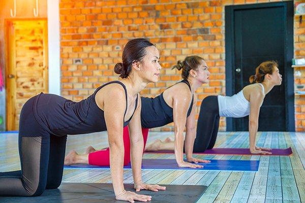 Bikram yoga : 3 femmes en pratique de yoga chaud