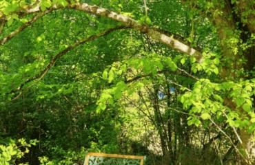 Jardin à La Source avec un banc