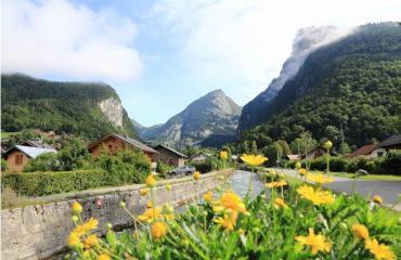 vue montagne Alpes 2